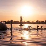 Calendrier des séances de Yoga Nidra