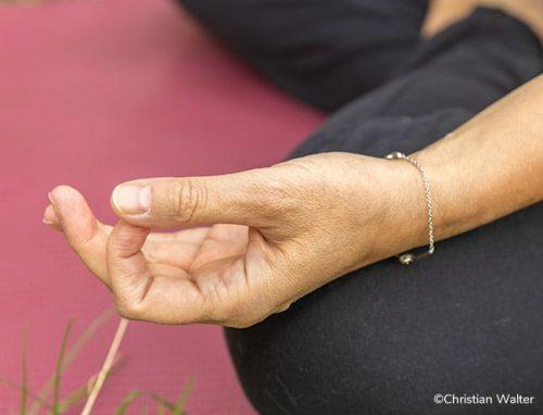cours-yoga-hatha-en-visio